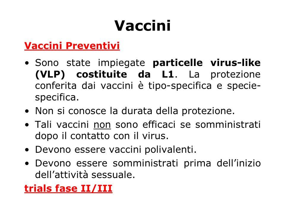 Vaccini Vaccini Preventivi Sono state impiegate particelle virus-like (VLP) costituite da L1. La protezione conferita dai vaccini è tipo-specifica e s