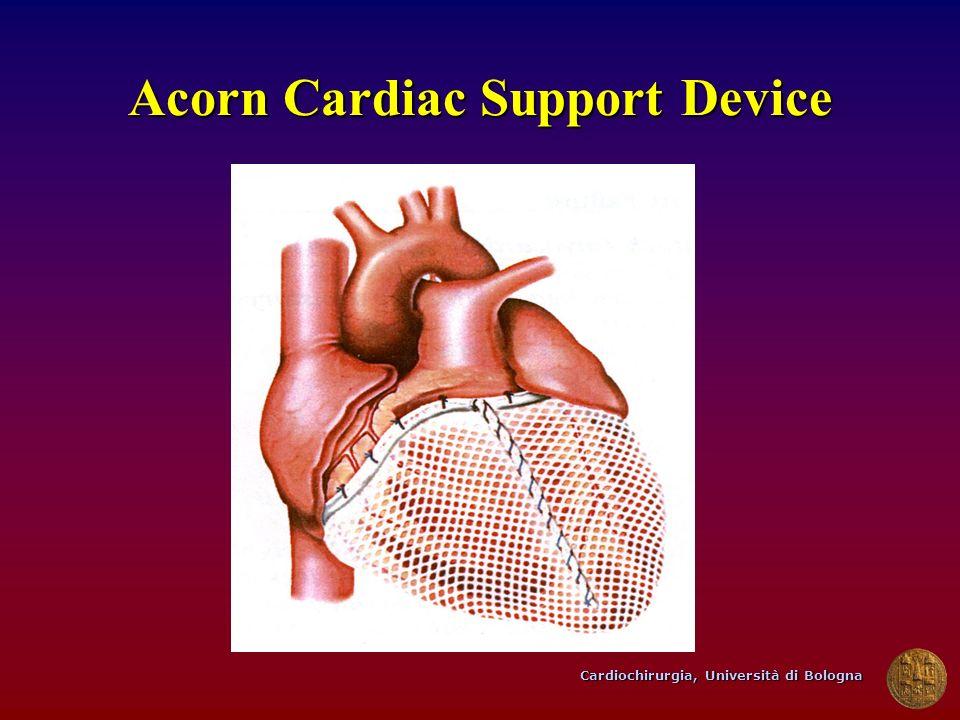 Cardiochirurgia, Università di Bologna Acorn Cardiac Support Device