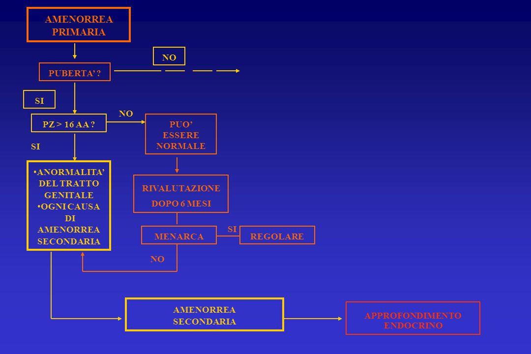 AMENORREA PRIMARIA PUBERTA ? PZ > 16 AA ? SI ANORMALITA DEL TRATTO GENITALE OGNI CAUSA DI AMENORREA SECONDARIA PUO ESSERE NORMALE RIVALUTAZIONE DOPO 6