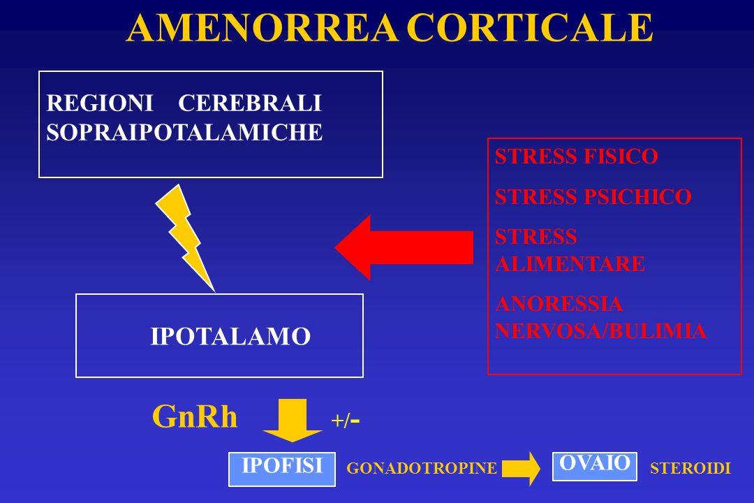 REGIONI CEREBRALI SOPRAIPOTALAMICHE IPOTALAMO STRESS FISICO STRESS PSICHICO STRESS ALIMENTARE ANORESSIA NERVOSA/BULIMIA GnRh AMENORREA CORTICALE IPOFI