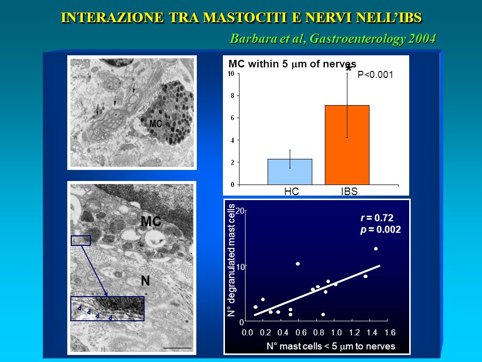 Barbara et al, Gastroenterology 2004 INTERAZIONE TRA MASTOCITI E NERVI NELLIBS MC N MC within 5 m of nerves HCIBS * P<0.001 0 10 20 0.00.20.40.60.81.01.21.41.6 r = 0.72 p = 0.002 N° degranulated mast cells N° mast cells < 5 m to nerves