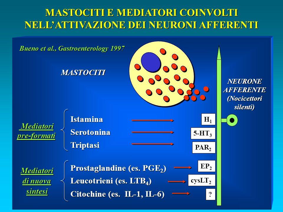 MASTOCITI E MEDIATORI COINVOLTI NELLATTIVAZIONE DEI NEURONI AFFERENTI IstaminaSerotoninaTriptasi Prostaglandine (es.