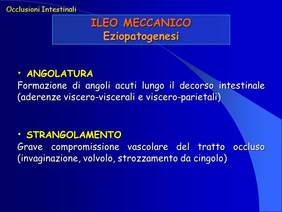 ILEO MECCANICO Eziopatogenesi Occlusioni Intestinali ANGOLATURA ANGOLATURA Formazione di angoli acuti lungo il decorso intestinale (aderenze viscero-v