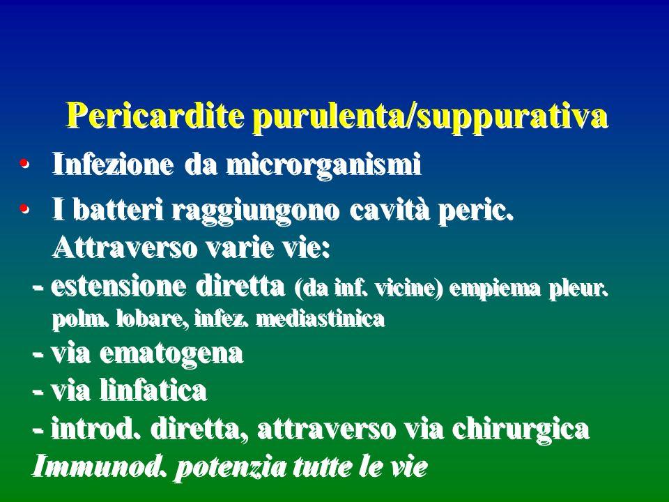 Pericardite purulenta/suppurativa Infezione da microrganismi I batteri raggiungono cavità peric. Attraverso varie vie: - estensione diretta (da inf. v
