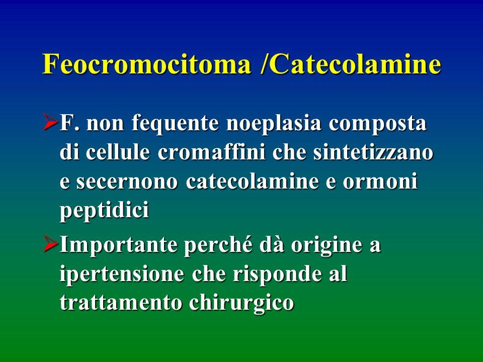 Feocromocitoma /Catecolamine F. non fequente noeplasia composta di cellule cromaffini che sintetizzano e secernono catecolamine e ormoni peptidici F.
