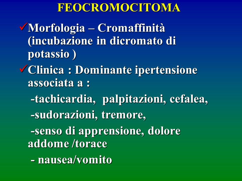 FEOCROMOCITOMA Morfologia – Cromaffinità (incubazione in dicromato di potassio ) Morfologia – Cromaffinità (incubazione in dicromato di potassio ) Cli