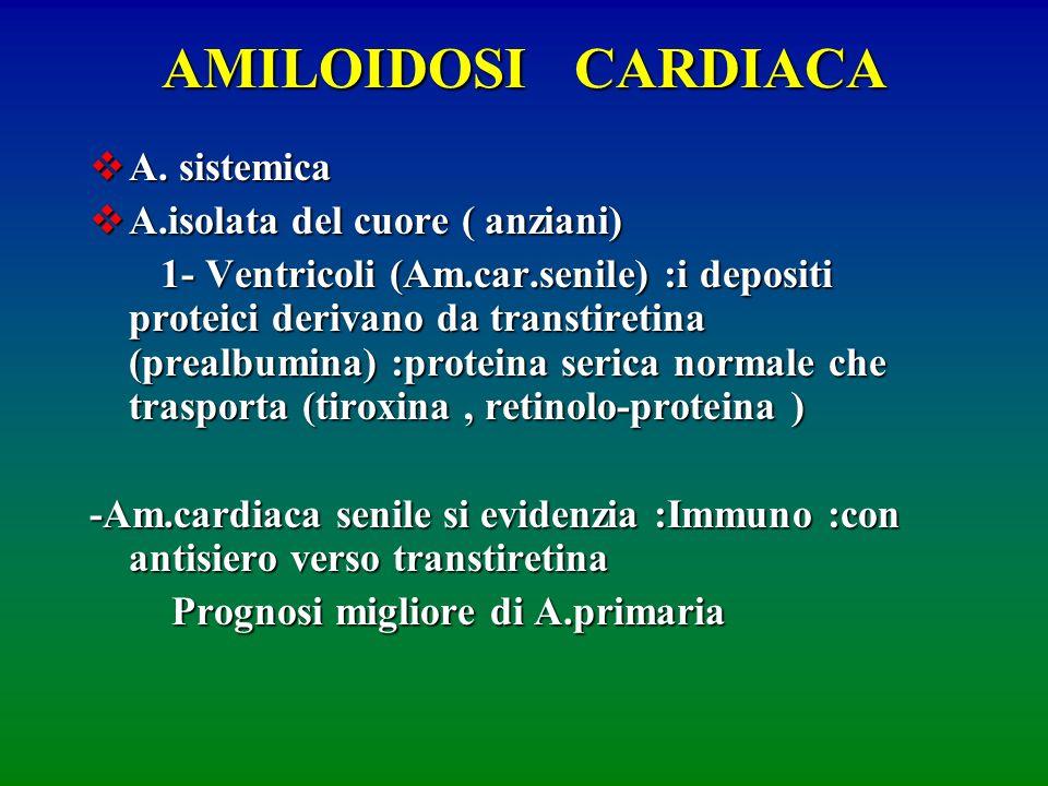 AMILOIDOSI CARDIACA A. sistemica A. sistemica A.isolata del cuore ( anziani) A.isolata del cuore ( anziani) 1- Ventricoli (Am.car.senile) :i depositi