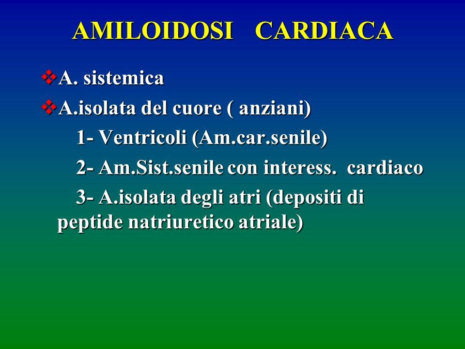 AMILOIDOSI CARDIACA A. sistemica A. sistemica A.isolata del cuore ( anziani) A.isolata del cuore ( anziani) 1- Ventricoli (Am.car.senile) 1- Ventricol