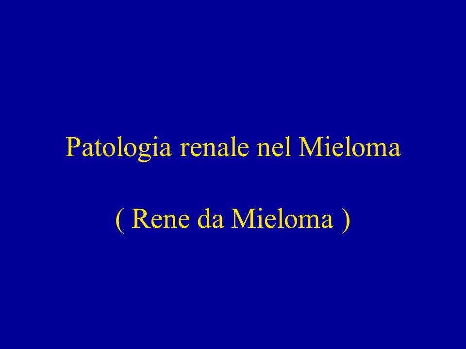 Patologia renale nel Mieloma ( Rene da Mieloma )