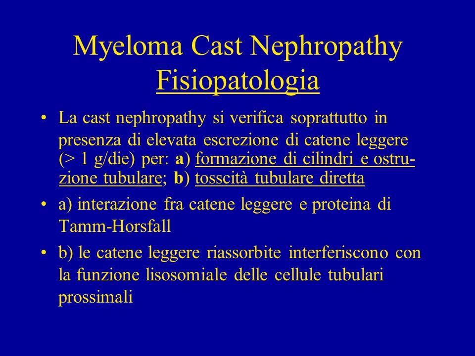 Myeloma Cast Nephropathy Fisiopatologia La cast nephropathy si verifica soprattutto in presenza di elevata escrezione di catene leggere (> 1 g/die) pe