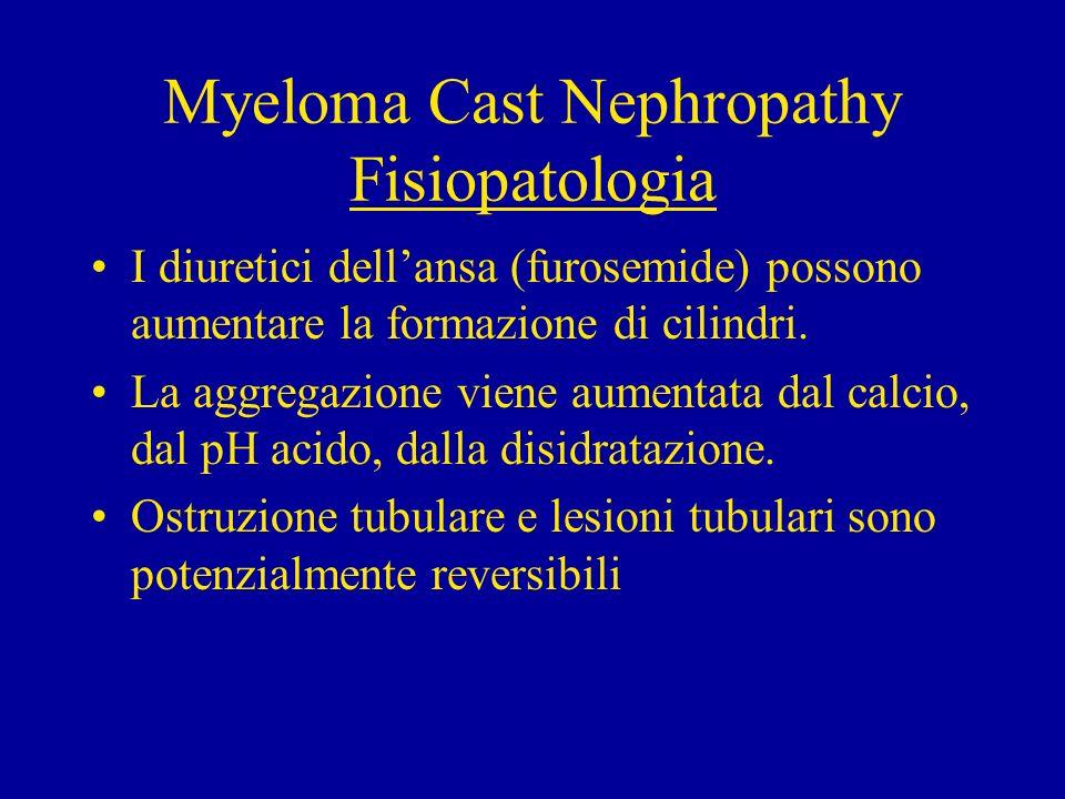 Myeloma Cast Nephropathy Fisiopatologia I diuretici dellansa (furosemide) possono aumentare la formazione di cilindri. La aggregazione viene aumentata