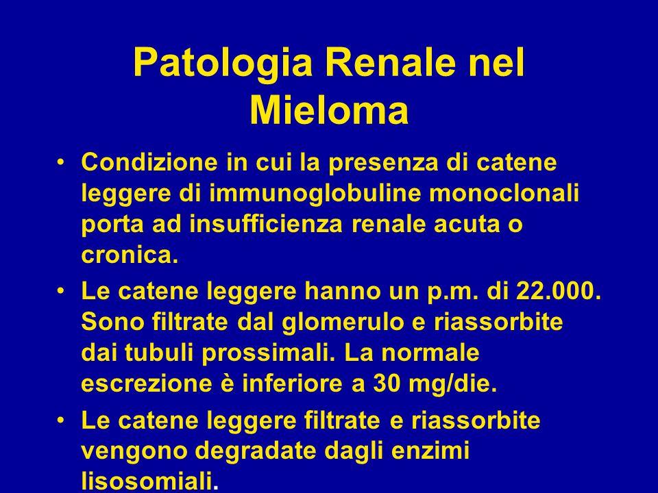 Patologia Renale nel Mieloma Condizione in cui la presenza di catene leggere di immunoglobuline monoclonali porta ad insufficienza renale acuta o cron