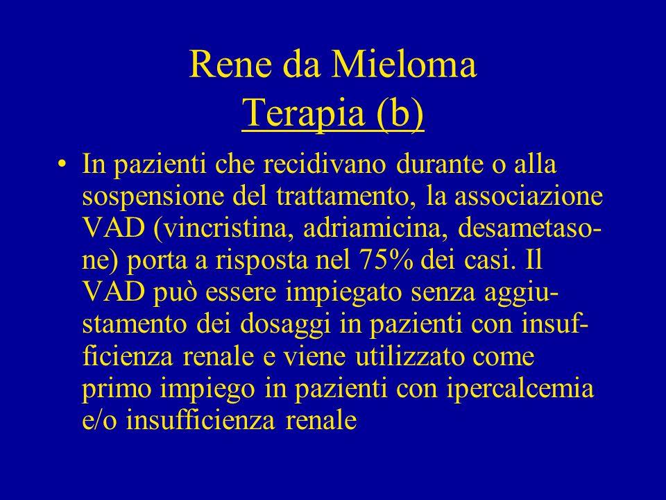 Rene da Mieloma Terapia (b) In pazienti che recidivano durante o alla sospensione del trattamento, la associazione VAD (vincristina, adriamicina, desa