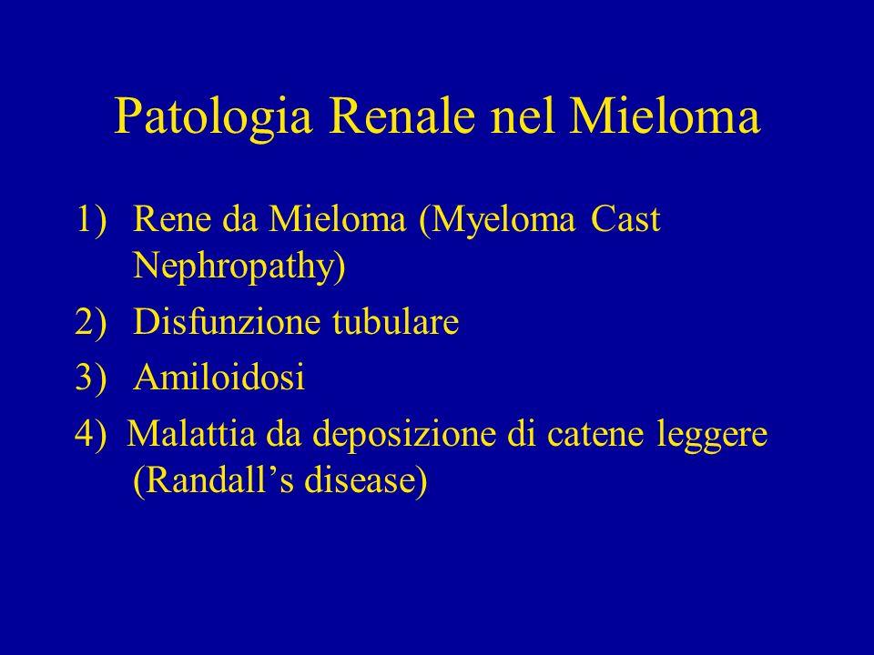 Patologia Renale nel Mieloma 1)Rene da Mieloma (Myeloma Cast Nephropathy) 2)Disfunzione tubulare 3)Amiloidosi 4) Malattia da deposizione di catene leg