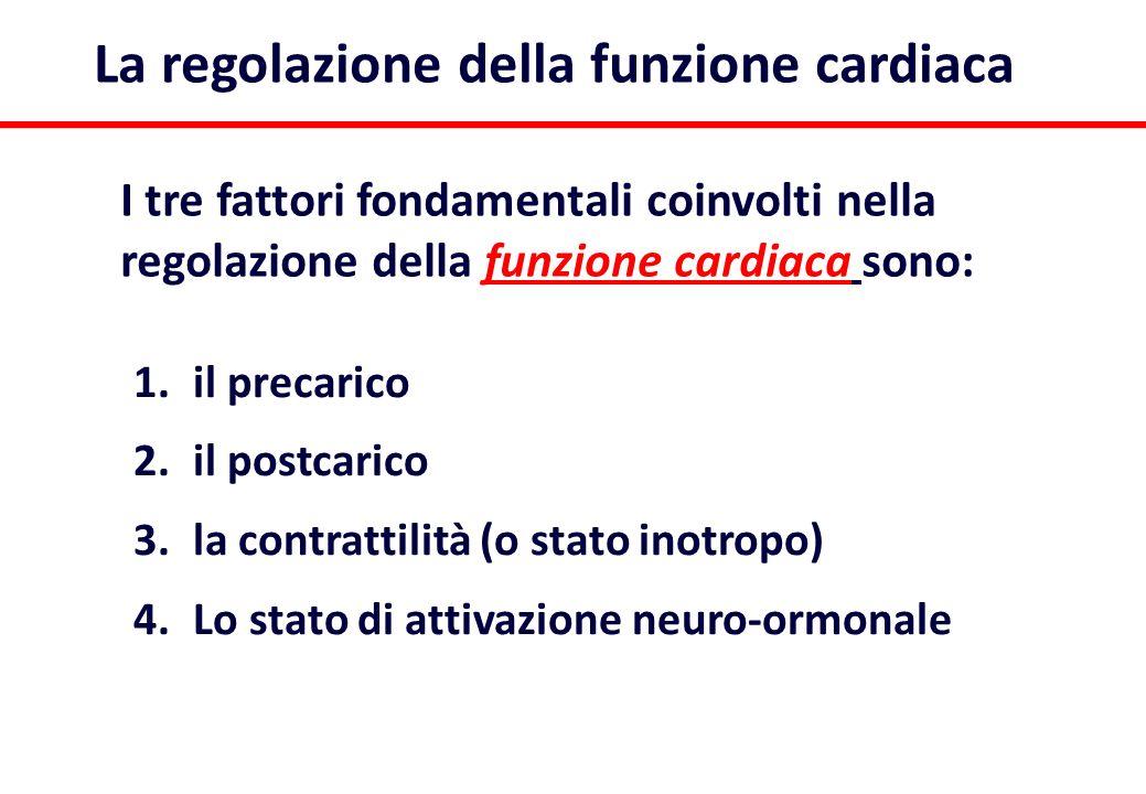 1.il precarico 2.il postcarico 3.la contrattilità (o stato inotropo) 4.Lo stato di attivazione neuro-ormonale La regolazione della funzione cardiaca I