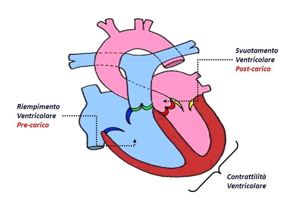 Riempimento Ventricolare Pre-carico. Svuotamento Ventricolare Post-carico. Contrattilità Ventricolare
