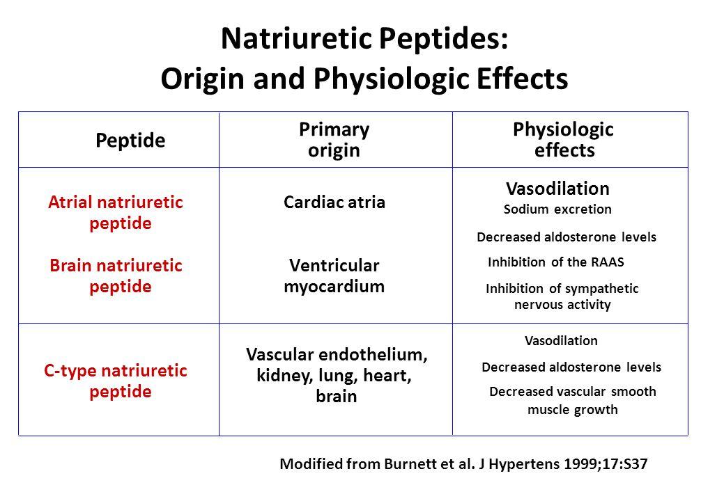 Natriuretic Peptides: Origin and Physiologic Effects Atrial natriuretic peptide Brain natriuretic peptide Primary origin Cardiac atria Ventricular myo