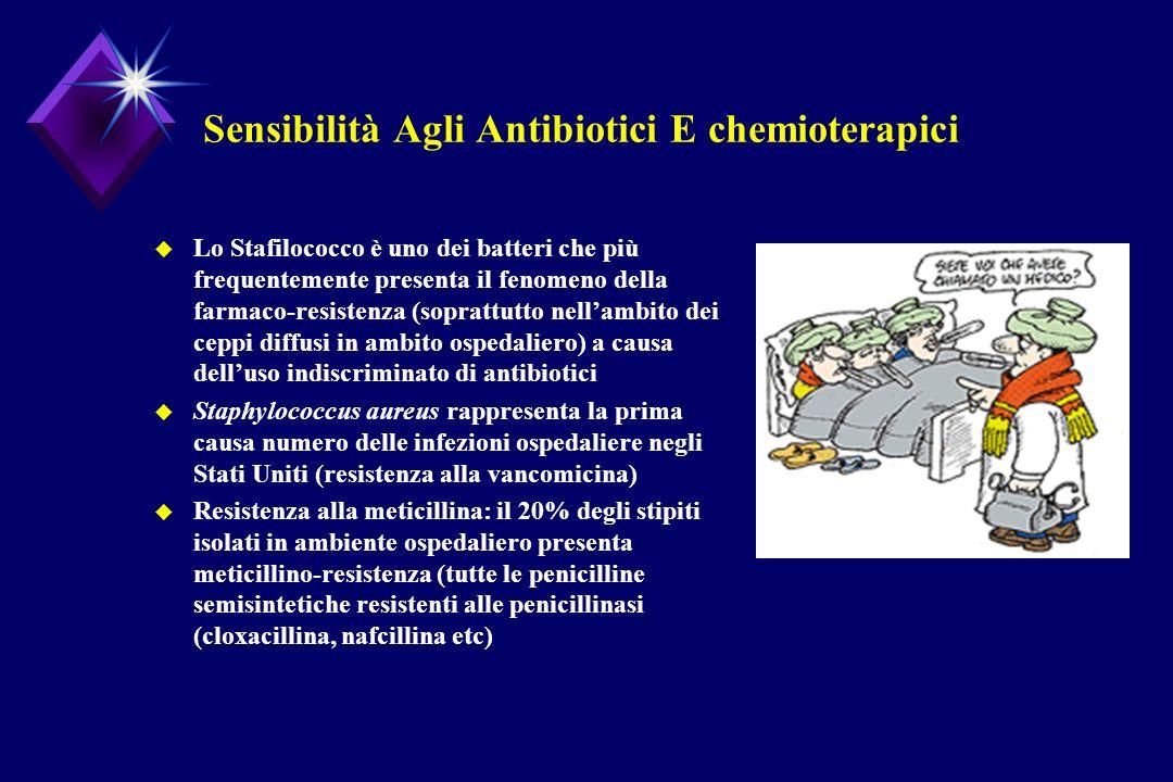 Sensibilità Agli Antibiotici E chemioterapici u Lo Stafilococco è uno dei batteri che più frequentemente presenta il fenomeno della farmaco-resistenza