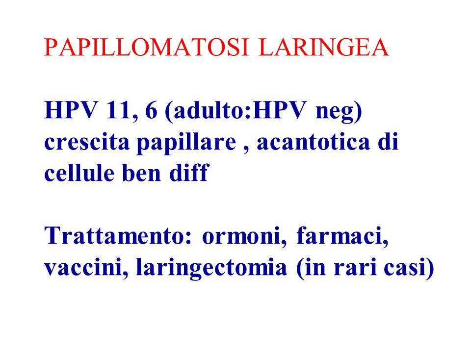 PAPILLOMATOSI LARINGEA HPV 11, 6 (adulto:HPV neg) crescita papillare, acantotica di cellule ben diff Trattamento: ormoni, farmaci, vaccini, laringectomia (in rari casi)