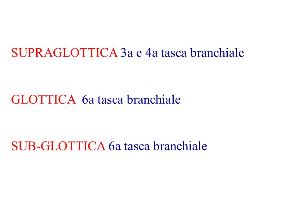 SUPRAGLOTTICA 3a e 4a tasca branchiale GLOTTICA 6a tasca branchiale SUB-GLOTTICA 6a tasca branchiale