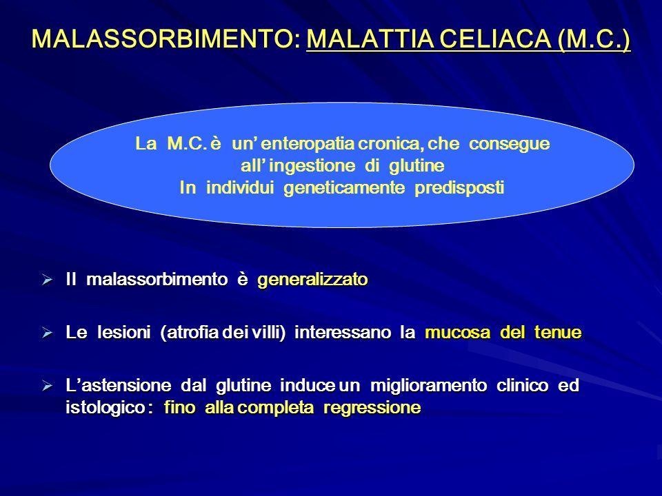 MALASSORBIMENTO: MALATTIA CELIACA (M.C.) Il malassorbimento è generalizzato Il malassorbimento è generalizzato Le lesioni (atrofia dei villi) interess