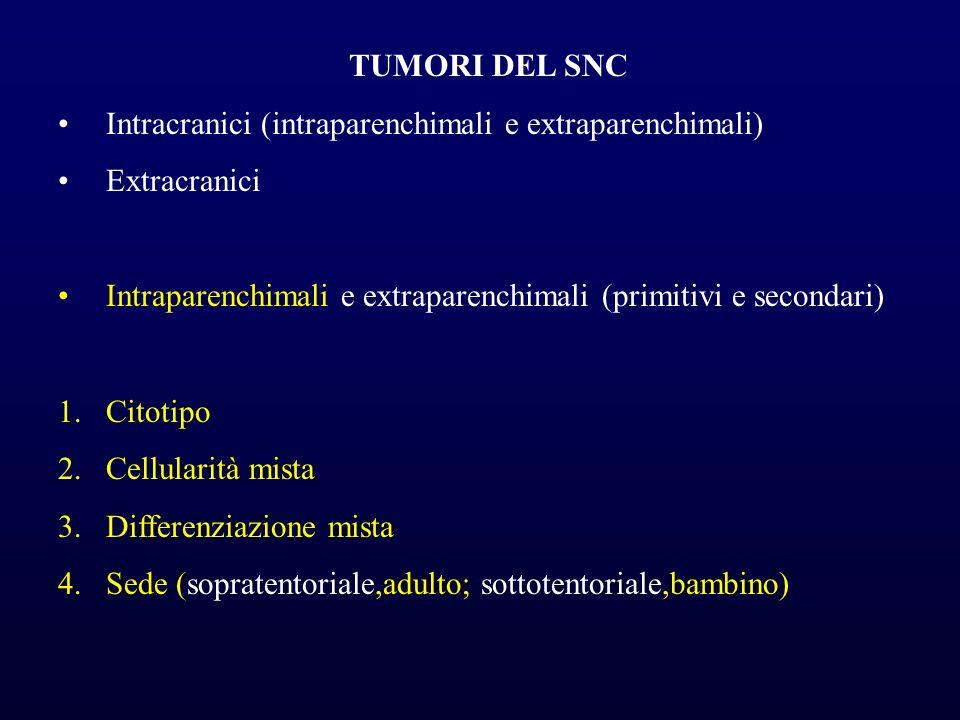 TUMORI DEL SNC Intracranici (intraparenchimali e extraparenchimali) Extracranici Intraparenchimali e extraparenchimali (primitivi e secondari) 1.Citot