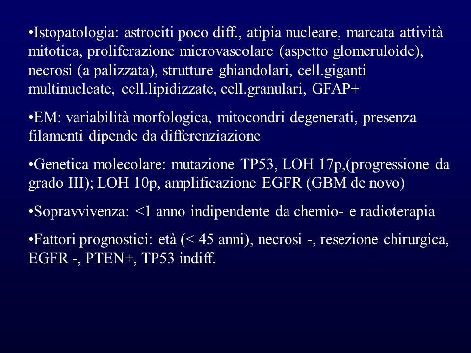 Istopatologia: astrociti poco diff., atipia nucleare, marcata attività mitotica, proliferazione microvascolare (aspetto glomeruloide), necrosi (a pali