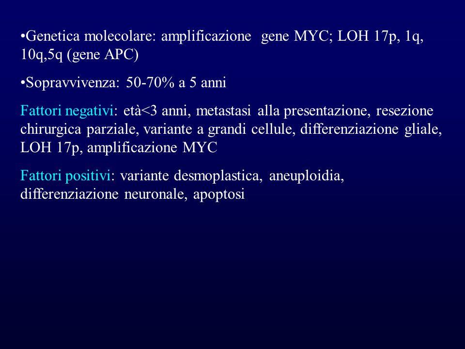 Genetica molecolare: amplificazione gene MYC; LOH 17p, 1q, 10q,5q (gene APC) Sopravvivenza: 50-70% a 5 anni Fattori negativi: età<3 anni, metastasi al