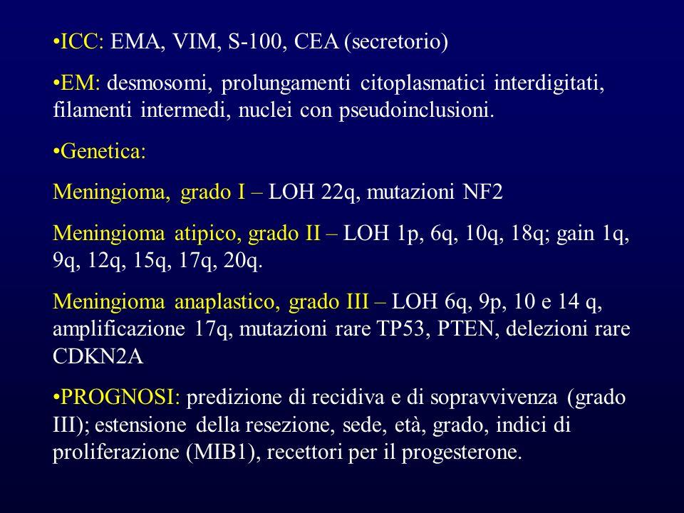 ICC: EMA, VIM, S-100, CEA (secretorio) EM: desmosomi, prolungamenti citoplasmatici interdigitati, filamenti intermedi, nuclei con pseudoinclusioni. Ge