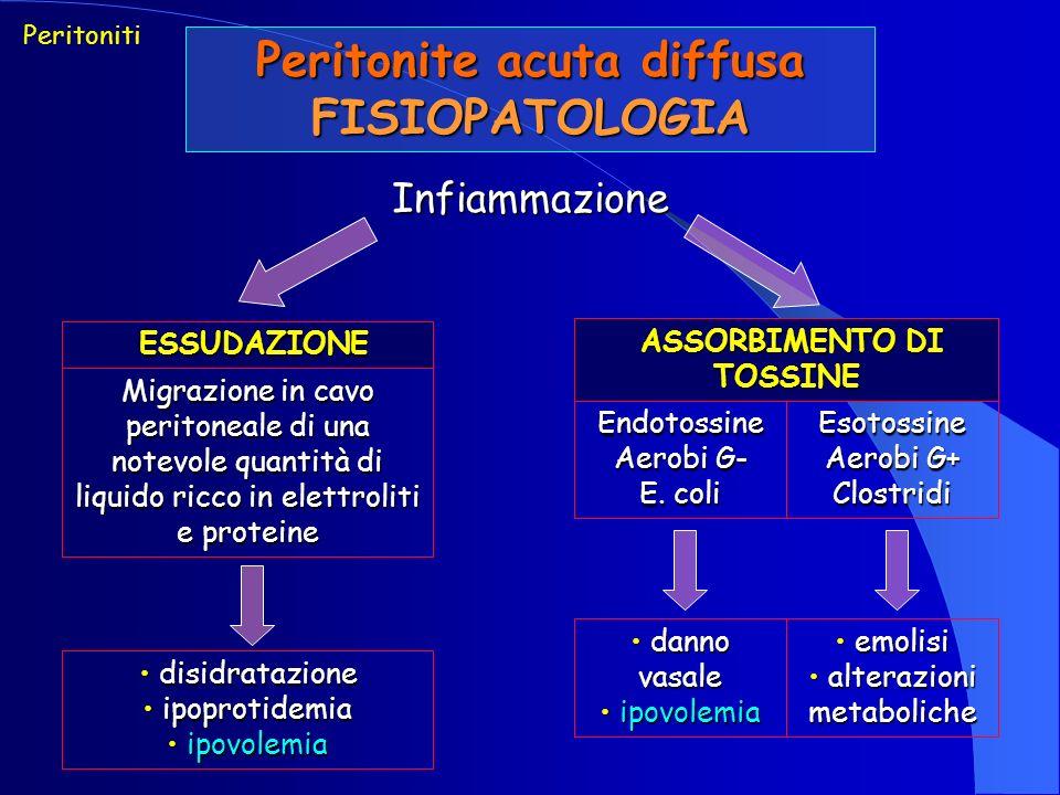 Peritonite acuta diffusa FISIOPATOLOGIA Infiammazione Peritoniti ESSUDAZIONE ESSUDAZIONE Migrazione in cavo peritoneale di una notevole quantità di liquido ricco in elettroliti e proteine ASSORBIMENTO DI TOSSINE ASSORBIMENTO DI TOSSINE Endotossine Aerobi G- E.