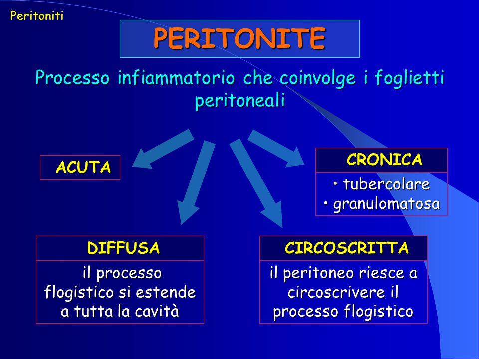 PERITONITE Processo infiammatorio che coinvolge i foglietti peritoneali Peritoniti ACUTA ACUTA DIFFUSA DIFFUSA il processo flogistico si estende a tutta la cavità il processo flogistico si estende a tutta la cavità CIRCOSCRITTA CIRCOSCRITTA il peritoneo riesce a circoscrivere il processo flogistico CRONICA CRONICA tubercolare tubercolare granulomatosa granulomatosa
