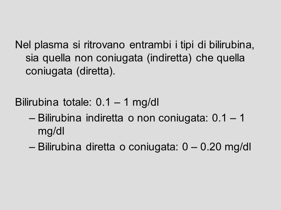 3c. ESCREZIONE La bilirubina coniugata (o diretta) è idrosolubile e come tale può essere escreta dal polo biliare dellepatocita allinterno dei canalic