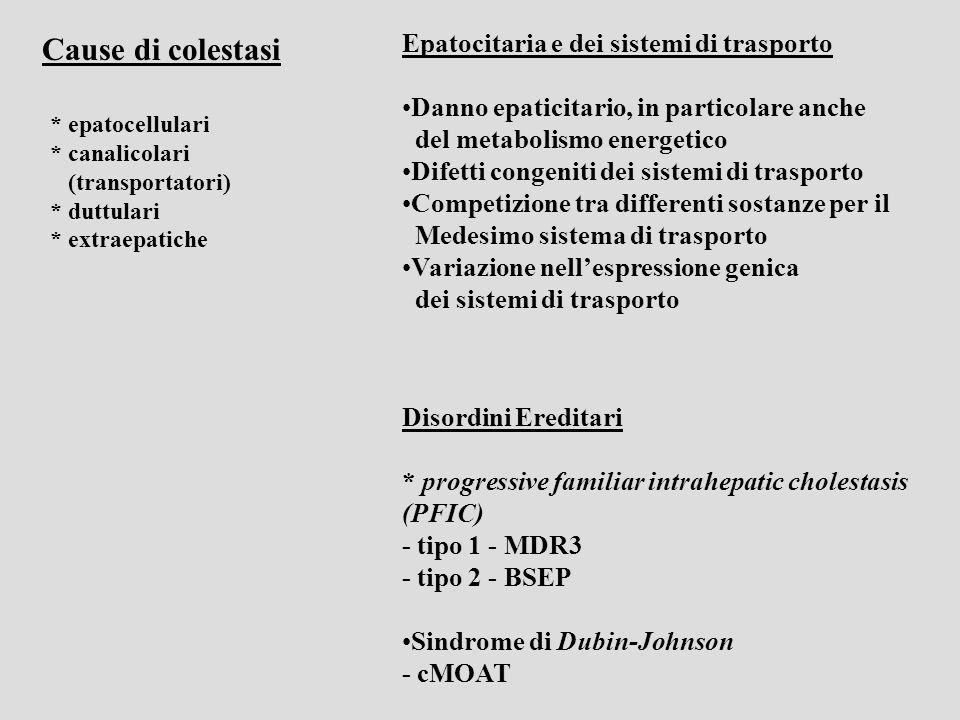 Membrana Basolaterale * ATPase sodio-potassio * Canali del potassio * Trasporto sodio dipendente (protoni, bicarbonato) * NTCP – sodium-taurocholate cotransporter (trasportatore primario per la captazione sali-biliari dipendentedal sangue portale) * OATP1,2 – trasportatoreanionico-organico (sodio independente) (carrier multispecifico: Sali biliari, anioni organici, bilirubina, estrogeni …) Membrana Canalicolare (apicale) * MDR1 – multidrug-resistance-1 P-glycoprotein (escrezione ATP dipendente di cationi organici,tossine, xenobiotici) * MDR3 – multidrug-resistance-1 P-glycoprotein (trasporto dei fosfolipidi) * BSEP – bile-salt export pump (trasporto Sali-biliari-ATP-dipendente nella bile, regolatore del flusso biliare) * MRP2/cMOAT – canalicular multispecific organic-anion transporter (trasporto ATP-dipendente di anioni organici, compreso il diglucuronide della bilirubina)