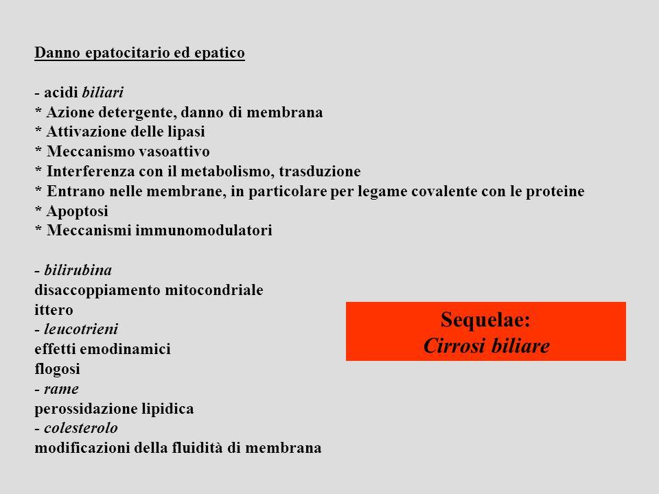 Disordini canalicolari * colangite (compresa quella di origine autoimmune) * granulomi * ischemie * Fibrosi cistica * tumori … Patologie extraepatiche * colelitiasi (calcoli) * tumori Secondarie * Stasi biliare * Mancato deflusso di bile nellintestino