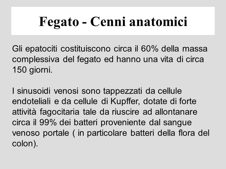 URINE BILE CIRCOLO ENTERO-EPATICO