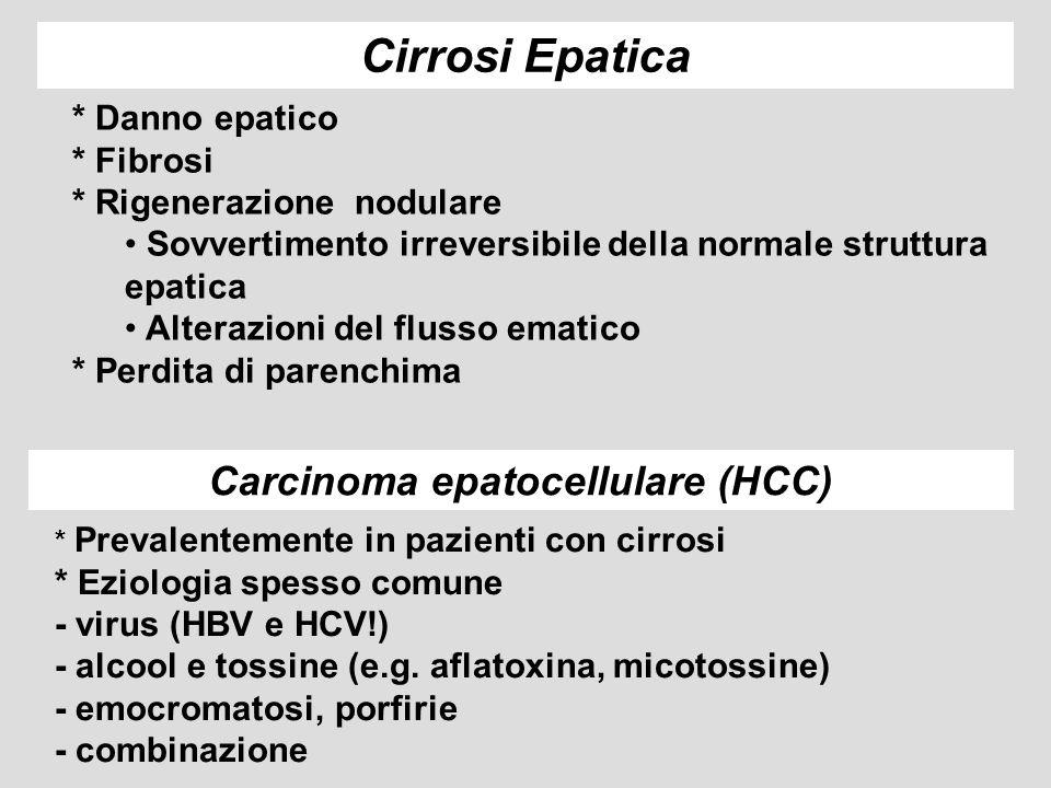 INSULINO RESISTENZA IPERINSULINEMIA Tessuto Adiposo FFA TG DELLA DIETA FFA TG glicolisi ciclo di Krebs Sintesi di FA lipid peroxidation LPS citochine ossidazione insulina disfunzione mitocondriale deficit di carnitina LIPOPROTEINE (VLDL) Deficit nutrizionale Radicali dellossigeno Danno, flogosi