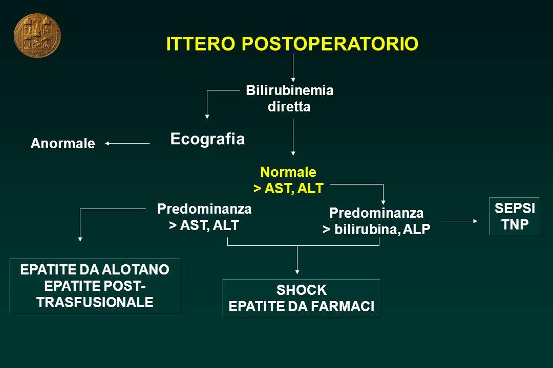 ITTERO POSTOPERATORIO Bilirubinemia diretta Ecografia Anormale Normale > AST, ALT EPATITE DA ALOTANO EPATITE POST- TRASFUSIONALE SHOCK EPATITE DA FARM