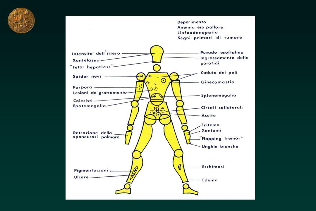 Vie biliari dilatate Vie biliari dilatate ERCP (PTC) di principio ERCP (PTC) di necessità Non operabile ERCP (PTC) (+ endoprotesi COLEDOCOLITIASI STENOSI VIE BILIARI CARCINOMAPANCREAS