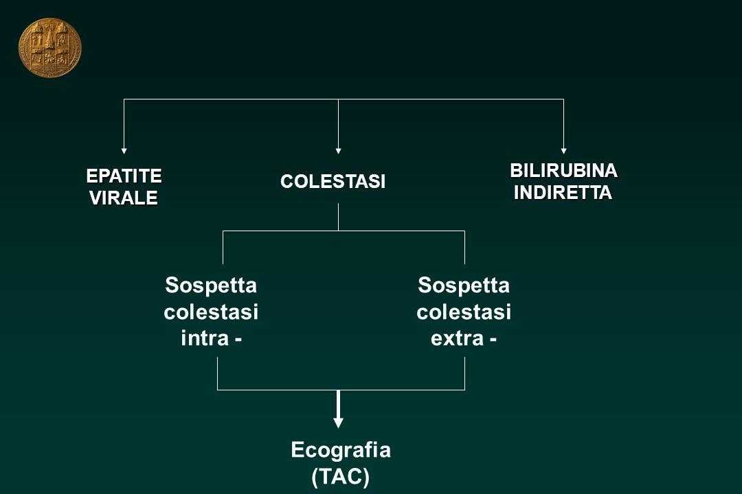 EPATITEVIRALE COLESTASI BILIRUBINAINDIRETTA Sospetta colestasi intra - Sospetta colestasi extra - Ecografia (TAC)