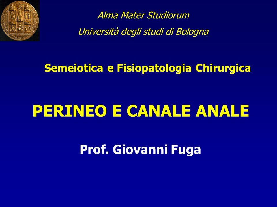 Alma Mater Studiorum Università degli studi di Bologna Semeiotica e Fisiopatologia Chirurgica PERINEO E CANALE ANALE Prof. Giovanni Fuga
