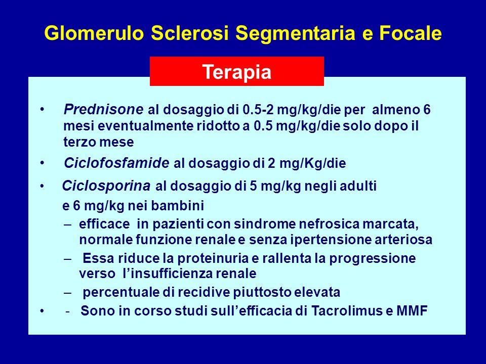 Prednisone al dosaggio di 0.5-2 mg/kg/die per almeno 6 mesi eventualmente ridotto a 0.5 mg/kg/die solo dopo il terzo mese Ciclofosfamide al dosaggio d