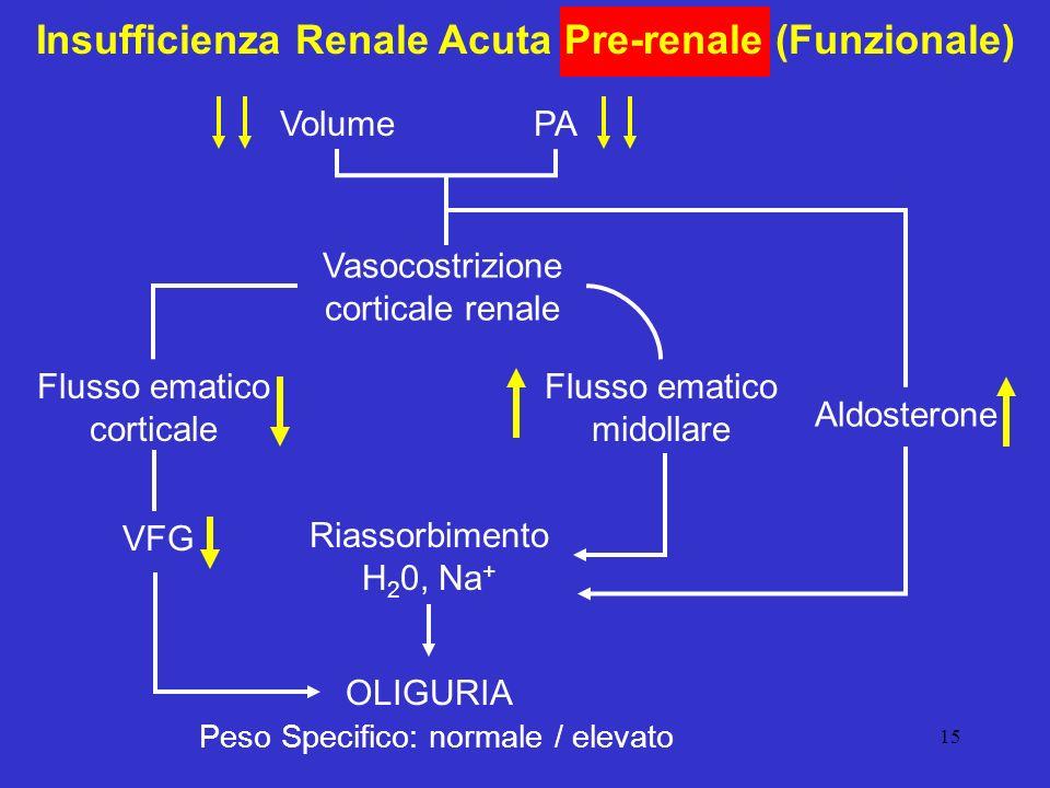 15 Insufficienza Renale Acuta Pre-renale (Funzionale) VolumePA Vasocostrizione corticale renale Flusso ematico corticale Flusso ematico midollare VFG