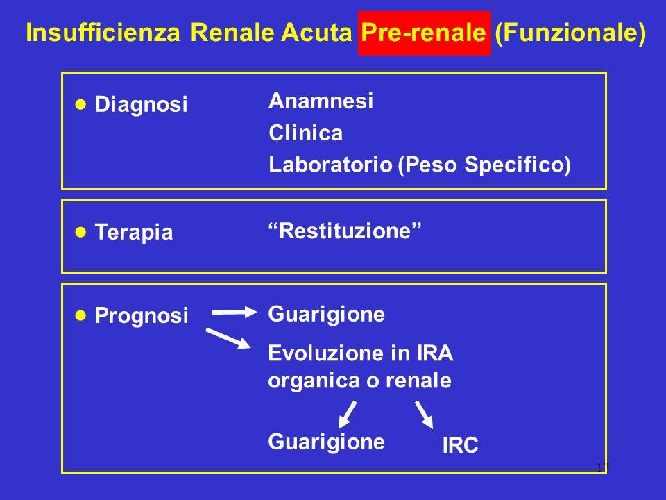 17 Insufficienza Renale Acuta Pre-renale (Funzionale) Diagnosi Anamnesi Clinica Laboratorio (Peso Specifico) Prognosi Guarigione Evoluzione in IRA org