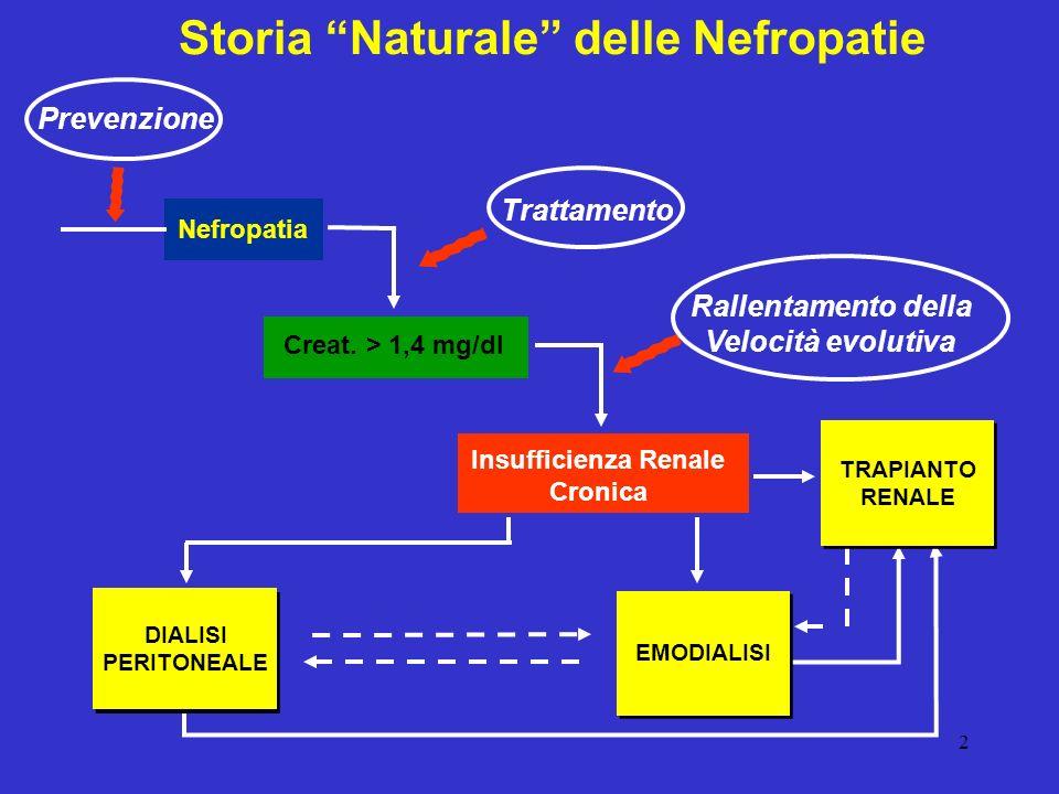 2 Nefropatia Creat. > 1,4 mg/dl Insufficienza Renale Cronica Storia Naturale delle Nefropatie DIALISI PERITONEALE EMODIALISI TRAPIANTO RENALE Trattame