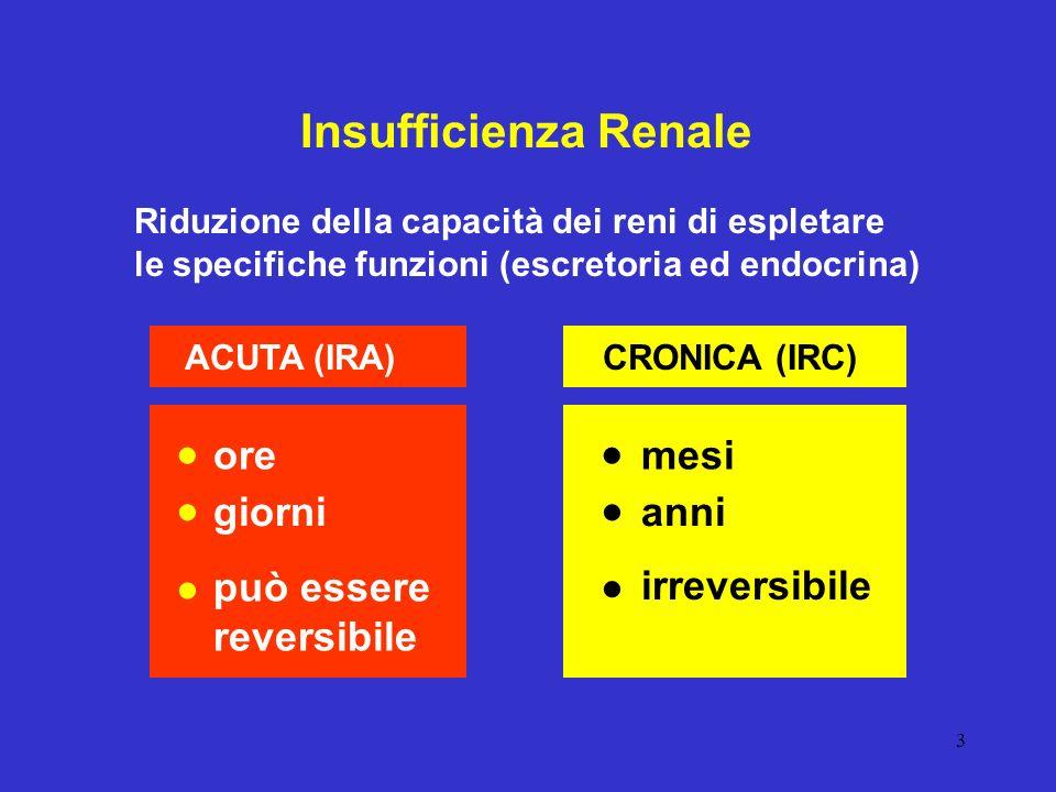 3 Insufficienza Renale Riduzione della capacità dei reni di espletare le specifiche funzioni (escretoria ed endocrina) ACUTA (IRA)CRONICA (IRC) ore gi