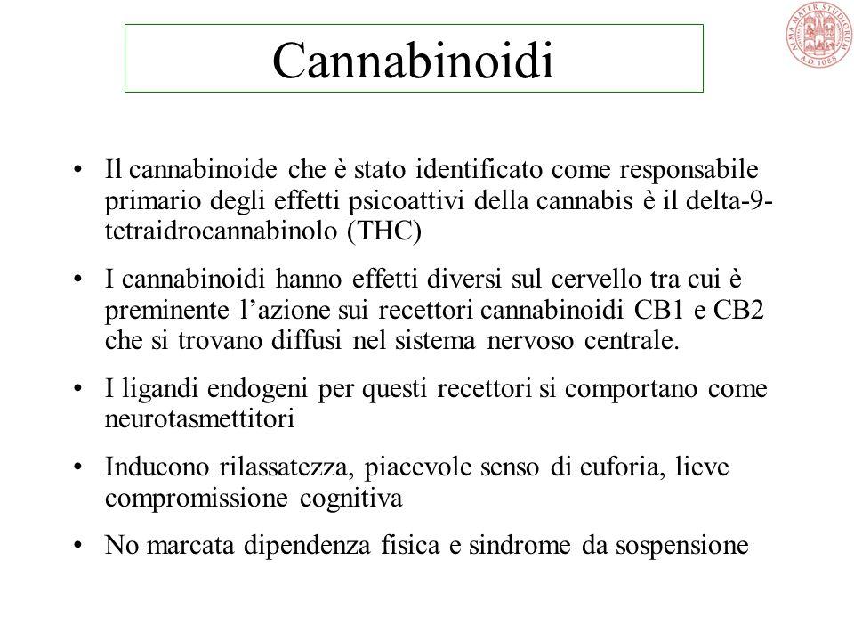 MARIJUANA (Infiorescenze, foglie seccate) THC 0,5-14% HASHISH ( Resina di cannabis e fiori pressati) THC 2-20% OLIO DI HASHISH THC 15-50% Cannabinoidi