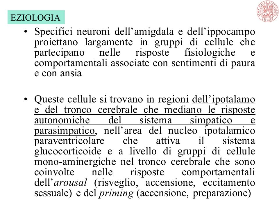 Scimmie con lesioni a livello della amigdala non mostrano più paura dei serpenti Gatti con simili lesioni non hanno più paura dei cani! EZIOLOGIA