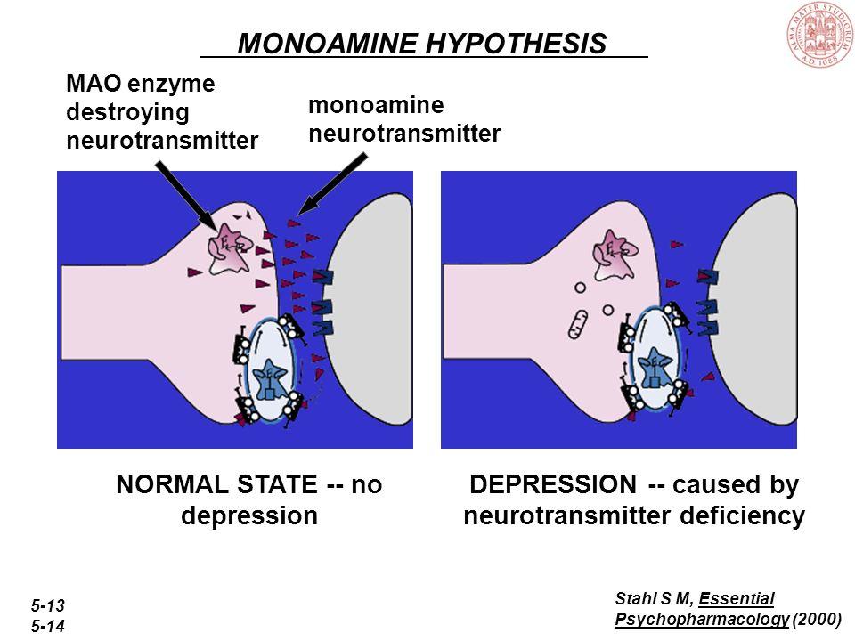 Spettro dazione degli antidepressivi Depressione Area ansioso-depressiva: –Disturbo da attacchi di panico –Disturbo di ansia generalizzata –Disturbo o