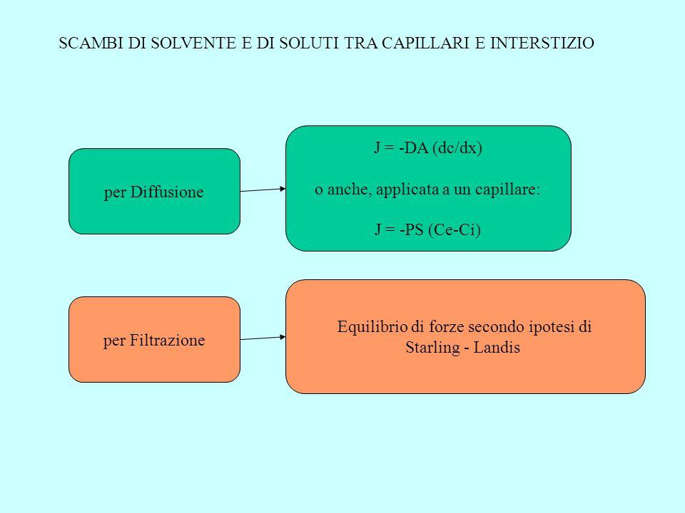 per Diffusione J = -DA (dc/dx) o anche, applicata a un capillare: J = -PS (Ce-Ci) per Filtrazione Equilibrio di forze secondo ipotesi di Starling - La