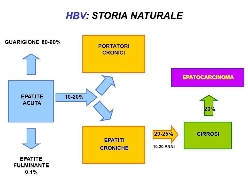 HBV: STORIA NATURALE GUARIGIONE 80-90% EPATITE FULMINANTE 0.1% 10-20 ANNI EPATITEACUTA EPATITI CRONICHE CIRROSI EPATOCARCINOMA PORTATORI CRONICI 20-25